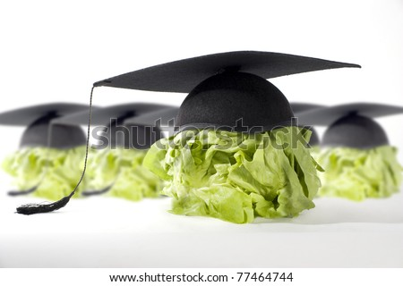 Healthy Food is good for your brain - stock photo