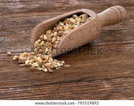 Healthy food option. Multigrain. With wooden scoop and copy space. Oats, barley, spelt, wheat, rice. Low angle view.