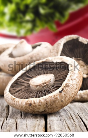 Healthy fresh mushrooms with very shallow depth of field - stock photo