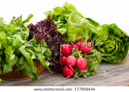 Healthy fresh salad ingredients displayed on old weathered wooden boards with several varieties of leafy green lettuce and a bunch of crisp peppery radish over a white background with copy space - stock photo