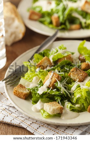 Healthy Green Organic Caesar Salad with Cheese and Croutons - stock photo