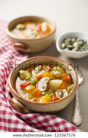 Healthy hot vegetable stew close up shoot - stock photo