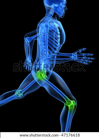 healthy joints - stock photo