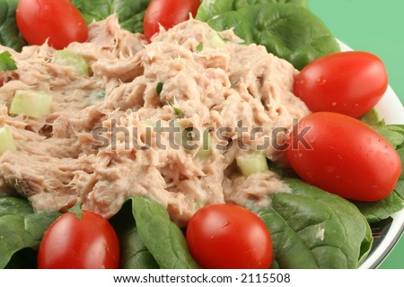 healthy lunch of tuna salad with cherry tomatoes and spinach - stock photo