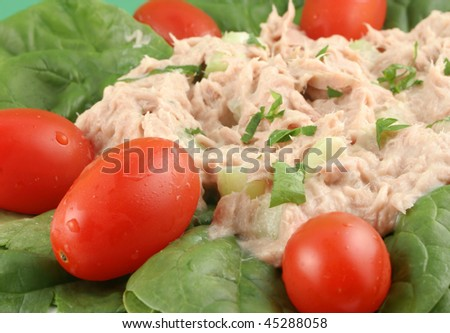 Healthy meal of tuna fish salad with cherry tomatoes and spinach - stock photo