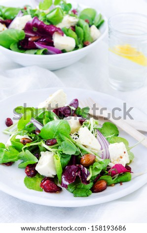Healthy mix green salad with cranberry, almonds and feta for a gourmet light meal lunch dinner appetiser    - stock photo