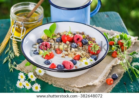 Healthy muesli with berry fruits and yogurt - stock photo