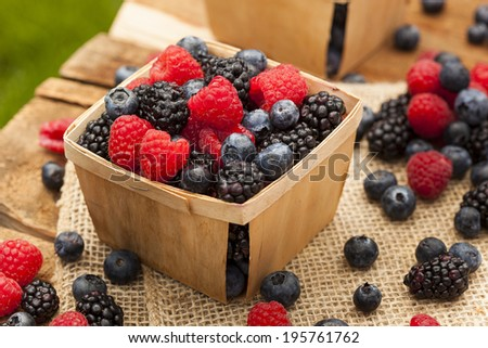 Healthy Organic Ripe Berries with Raspberries Blueberries and Blackberries - stock photo