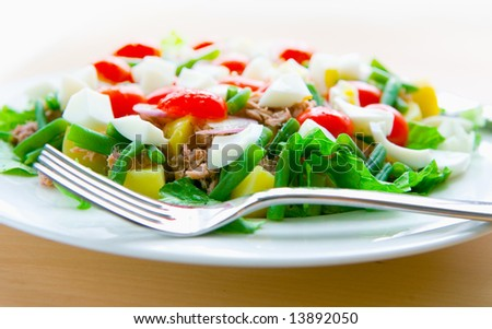 Healthy plate of tuna salad nicoise with tomatoes, potatoes, long beans and egg - stock photo