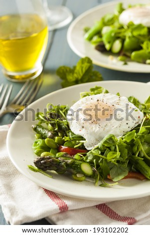 Healthy Scafata with a Poached Egg and Asparagus - stock photo