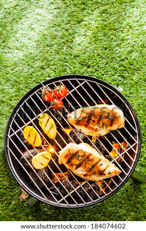 Healthy summer BBQ with chicken breasts and vegetables grilling on the coals in a portable barbecue standing an a green lawn, overhead view with copyspace - stock photo