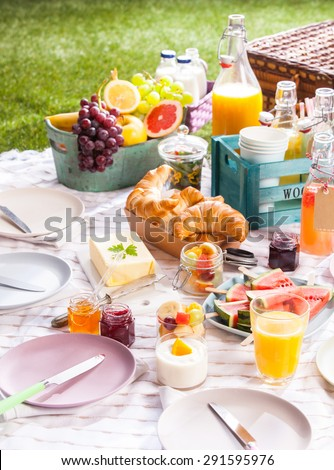 Healthy summer picnic laid out on a blanket on the grass with assorted fresh tropical fruit, juice and croissants with a circle of empty plates and hamper