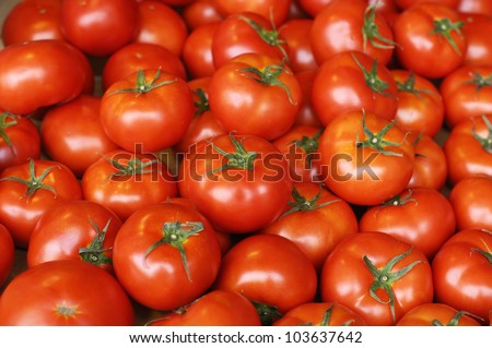 Healthy tomatoes background
