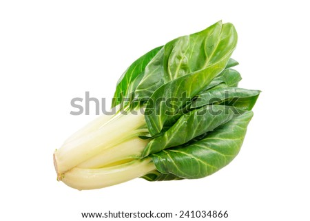 Healthy vegetables - isolated fresh chard plant - stock photo