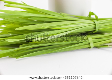 Healthy way of life. Energy from nature. Ecological wheat-grass juice. Regenerate your cells  stop ageing processes and detoxicate your body. High key isolated on white. - stock photo