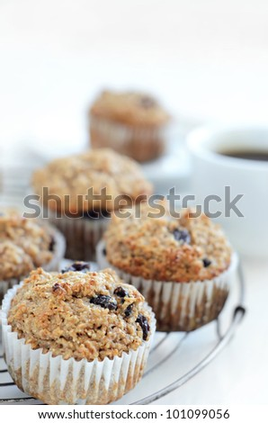 Healthy wholewheat bran muffin, a nutritious and fibre rich breakfast and snack - stock photo