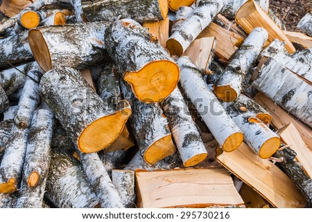 heap of birch log - stock photo