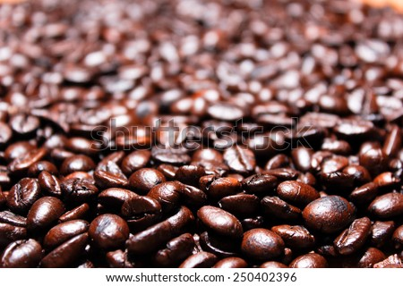Heap of burnt brown arabica coffee beans Middle focus  - stock photo