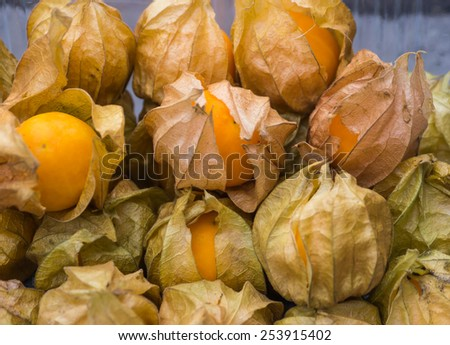 Heap of gooseberry or yellow physalis fruits - stock photo