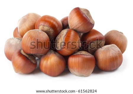 Heap of hazelnuts isolated over white background - stock photo