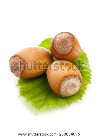 Heap of organic hazelnuts on hazelnut leaf over white background - selective focus macro shot - stock photo
