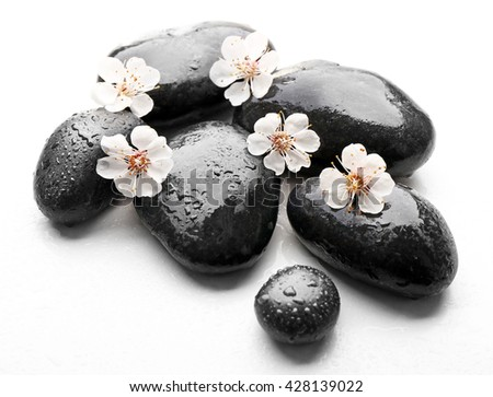 Heap of spa hot stones and flowers isolated on white