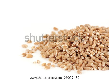 Heap of spelt, isolated on white