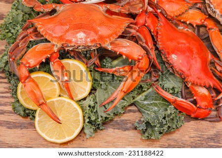 Heap of steamed Blue Crabs garnished with kale and lemon slices on a wooden table  - stock photo