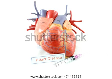 heart and syring - stock photo