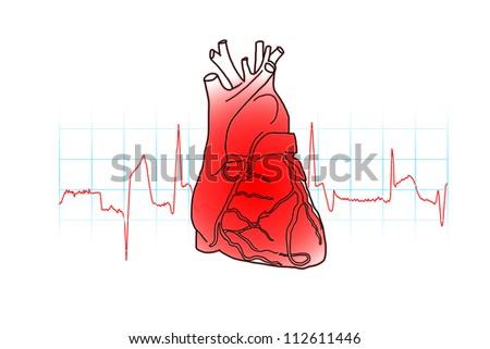 heart beats cardiogram - stock photo