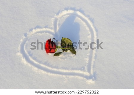 heart drawn in snow as symbol for love - stock photo