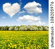 Heart from clouds above the spring landscape - stock photo