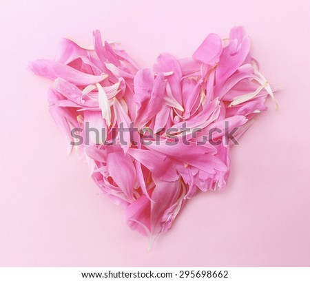 Heart from petals of  pink peony on a pink paper background - stock photo