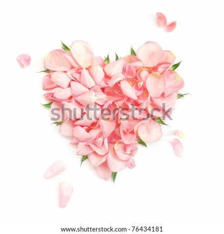 Heart from the most gentle rose-petals - stock photo