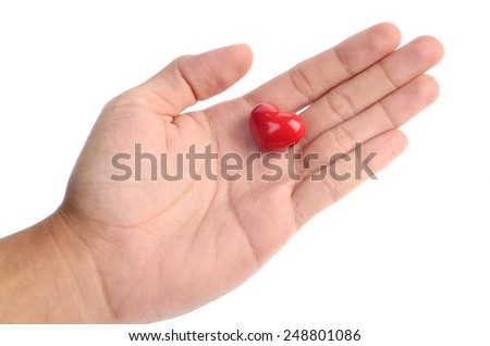 heart in hands isolated on white background