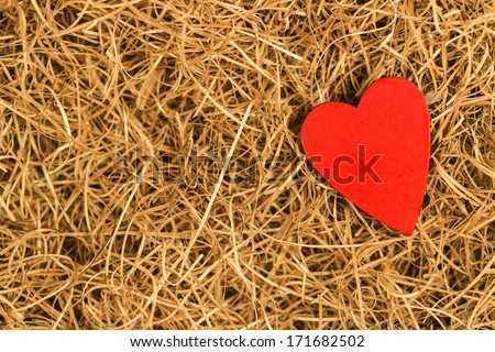 Heart in hay - stock photo