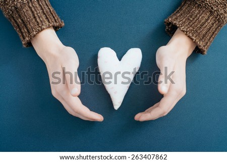 Heart in the hands - stock photo