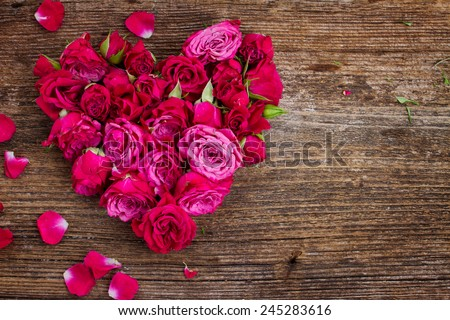 heart of fresh roses buds isolated on white background - stock photo