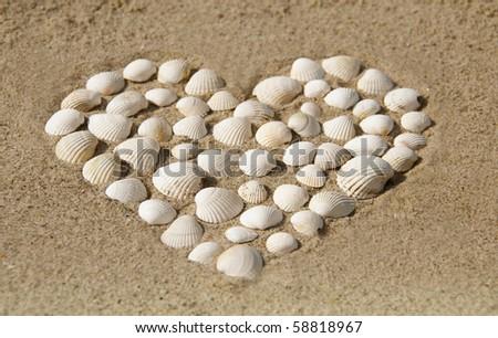 Heart of shells on the beach - stock photo
