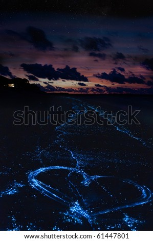 Heart on the beach from bioluminescent algae Noctiluca Scintillans on the Maldivian islands.