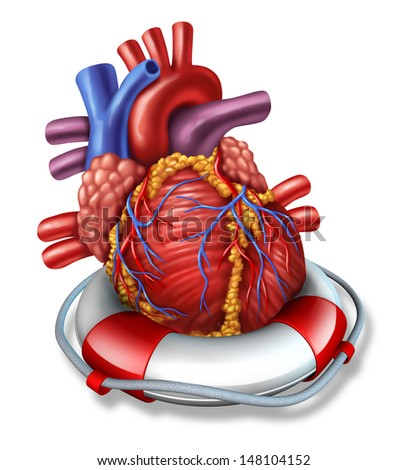 Heart rescue medical health care concept with a human cardiovascular organ in a lifesaver or life belt as a symbol of emergency coronary surgery or therapy before a stroke or heart attack on white.