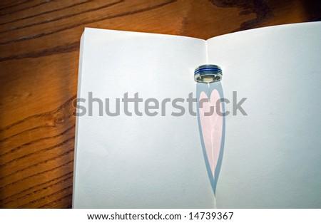 Heart Shadow - stock photo