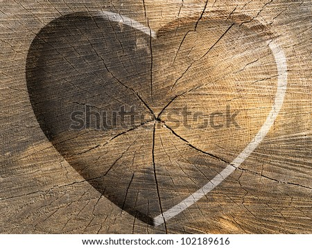 Heart Shape Carved on a Tree Cut - stock photo
