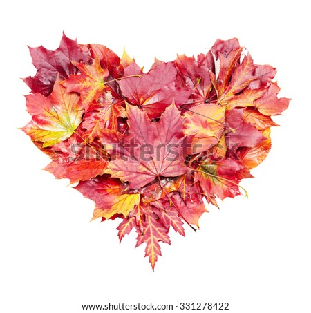 Heart shape of red autumn leaves isolated on white