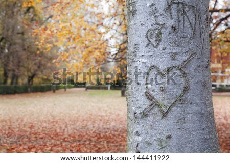 Heart-shape on trunk bark with a autumnal background - stock photo