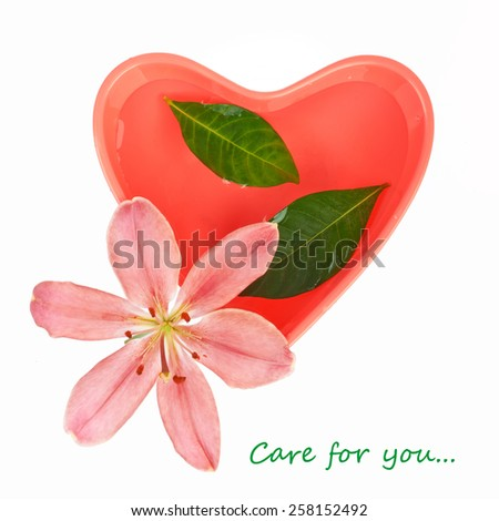 Heart-shaped bowl with water for manicure, leaves and lily isolated on white - stock photo