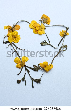 Heart shaped ring of dried buttercup flowers