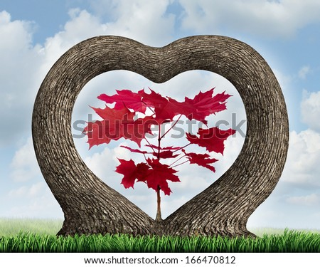 Heart tree as two growing plants merging together in romance giving birth to a red leaf maple as a love concept of beauty in nature and a metaphor for valentine  or loving nature and the environment. - stock photo