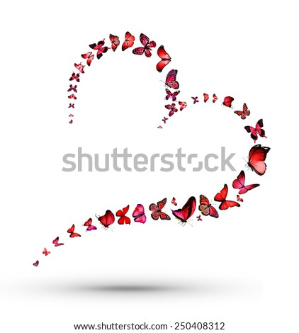 Heart with butterflies - stock photo
