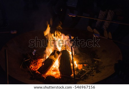 heating and warming sweet marshmallow in the campfire
